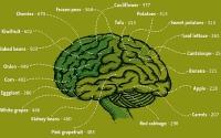 Brain Friendly Foods